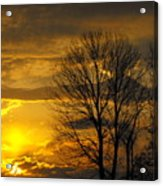 Sunset With Backlit Trees Acrylic Print