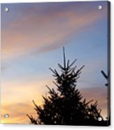 Sunset With Two Pine Trees Acrylic Print