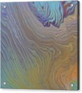 Sunset Wood Acrylic Print