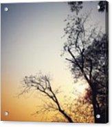 Sunset3 Acrylic Print