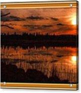 Sunsettia Gloria Catus 1 No. 1 L B. With Decorative Ornate Printed Frame. Acrylic Print