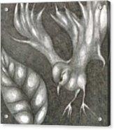 Supposedly Bird  Acrylic Print