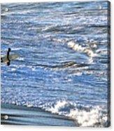 Surf City Acrylic Print