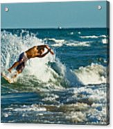 Surfboarding In Florida Acrylic Print
