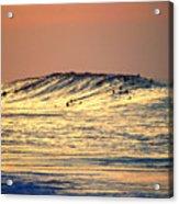 Surfers Gold Acrylic Print