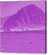 Surfers On Morro Rock Beach In Purple Acrylic Print