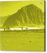 Surfers On Morro Rock Beach In Yellow Acrylic Print
