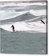 Surfing At Sennen Cove Cornwall Acrylic Print