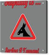 Surfing Bigstock  Donkey 171252860 Acrylic Print