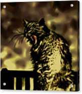 Surreal Cat Yawn Acrylic Print