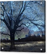 Surreal Fantasy Fairytale Blue Starry Trees Landscape - Fantasy Nature Trees Starlit Night Wall Art Acrylic Print