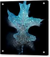 Surreal Ice Leaf Acrylic Print