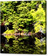 Surreal Springs Reflection Acrylic Print