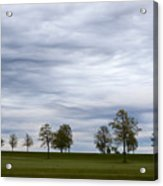 Surreal Trees And Cloudscape Acrylic Print