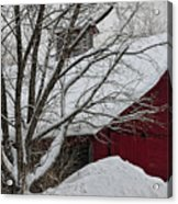 Surrounded By Snow Acrylic Print