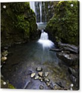 Susan Creek Falls Oregon 5 Acrylic Print