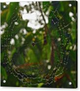 Suspended Moment Acrylic Print