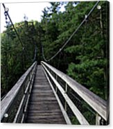 Suspension Bridge 3 Acrylic Print