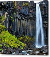 Svartifoss Waterfall - Iceland Acrylic Print