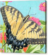 Swallowtail Butterfly And Zinnias Acrylic Print