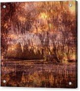 Swamp 3 Acrylic Print