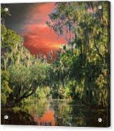 Swamp 1 Acrylic Print