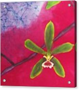 Swamp Orchi Fine Art Batik Acrylic Print