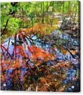 Swamp Pallet Acrylic Print