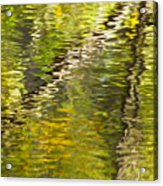 Swamp Reflections Abstract Acrylic Print