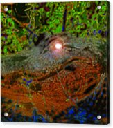 Swampthing Out There Acrylic Print