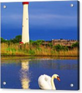 Swan At The Lighthouse Acrylic Print