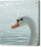 Swan Boat In The Lake Acrylic Print