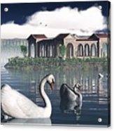 Swan Island Acrylic Print