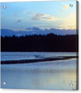 Swan Lake Acrylic Print