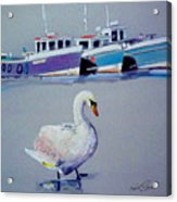 Swan Lake With Pleasure Boats Acrylic Print