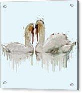 Swan Love Acrylic Painting Acrylic Print