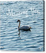 Swan Miss You Acrylic Print