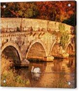 Swan On The Rye Water - Kildare, Ireland Acrylic Print