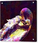 Swan Plumage Clean Water Bird  Acrylic Print