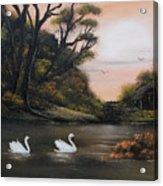 Swans At Dusk.for Sale Acrylic Print by Cynthia Adams