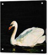Swany River Acrylic Print