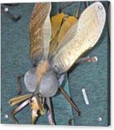 Swatter Bee Acrylic Print
