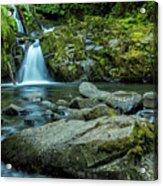 Sweet Creek Falls Acrylic Print