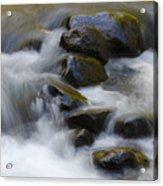 Sweet Creek Oregon 14 Acrylic Print