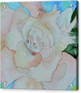 Sweet Gardenia Acrylic Print