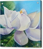 Sweet Magnolia Acrylic Print by Bobbi Price
