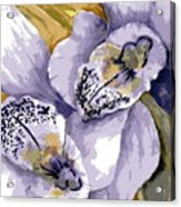 Sweet Orchids Acrylic Print