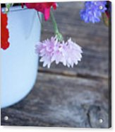 Sweet Pea And Corn Flowers Acrylic Print