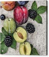 Sweet Plums  Acrylic Print