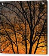 Sweet Sunset Acrylic Print